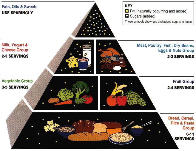 The food pyramid is very helpful if you want to create healthy diet.